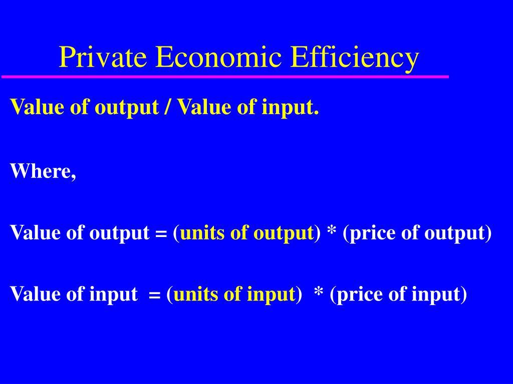 Private Economic Efficiency
