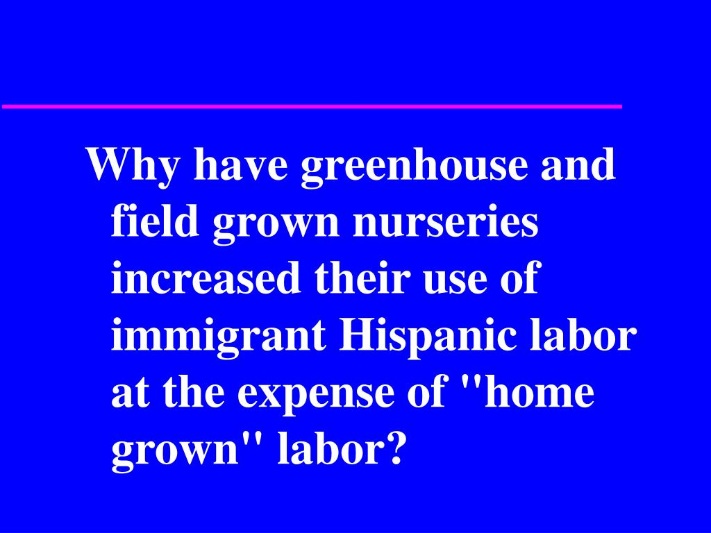 """Why have greenhouse and field grown nurseries increased their use of immigrant Hispanic labor at the expense of """"home grown"""" labor?"""