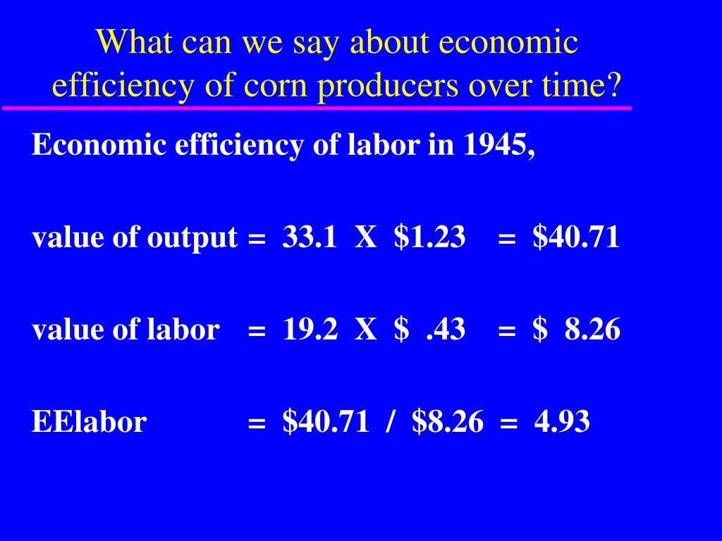 What can we say about economic efficiency of corn producers over time?