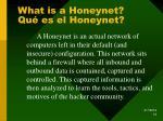 what is a honeynet qu es el honeynet