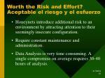 worth the risk and effort aceptable el riesgo y el esfuerzo