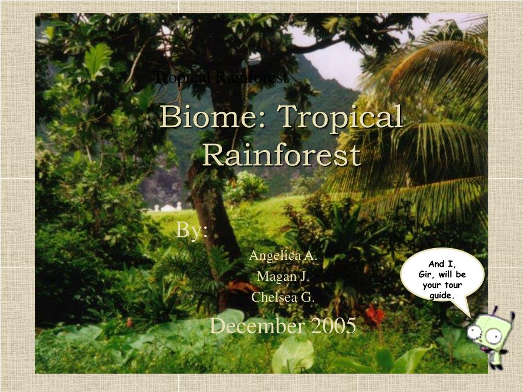 ppt biome tropical rainforest powerpoint presentation id 373963