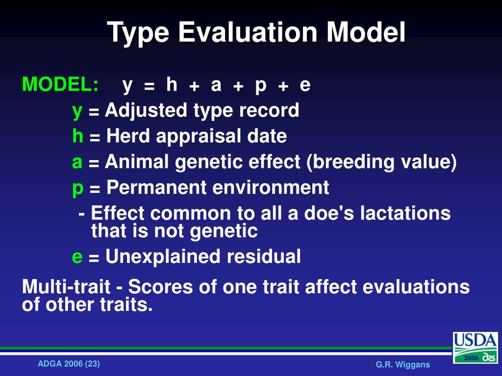 Type Evaluation Model