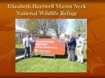 elizabeth hartwell mason neck national wildlife refuge
