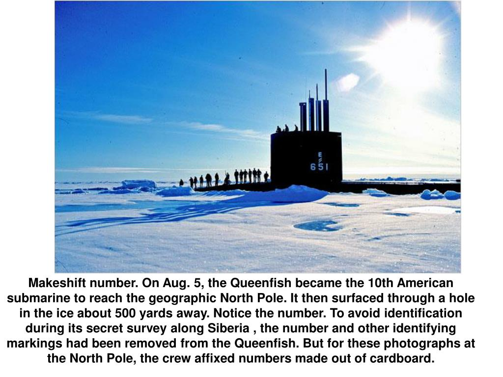 Makeshift number. On Aug. 5, the Queenfish became the 10th American submarine to reach the geographic North Pole. It then surfaced through a hole in the ice about 500 yards away. Notice the number. To avoid identification during its secret survey along Siberia , the number and other identifying markings had been removed from the Queenfish. But for these photographs at the North Pole, the crew affixed numbers made out of cardboard.