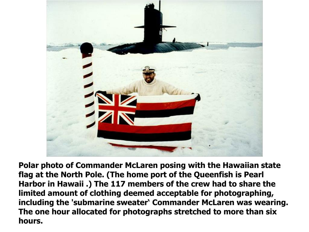 Polar photo of Commander McLaren posing with the Hawaiian state flag at the North Pole. (The home port of the Queenfish is Pearl Harbor in Hawaii .) The 117 members of the crew had to share the limited amount of clothing deemed acceptable for photographing, including the 'submarine sweater' Commander McLaren was wearing. The one hour allocated for photographs stretched to more than six hours.