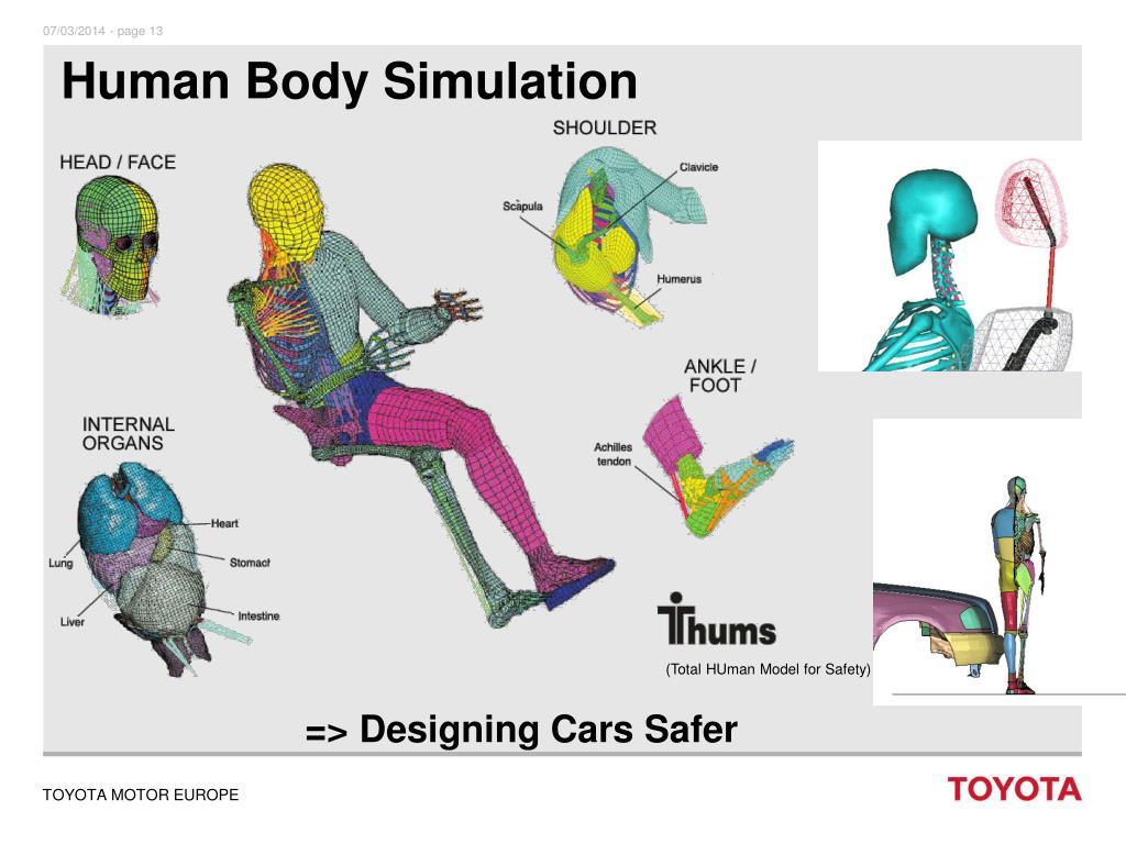 Human Body Simulation