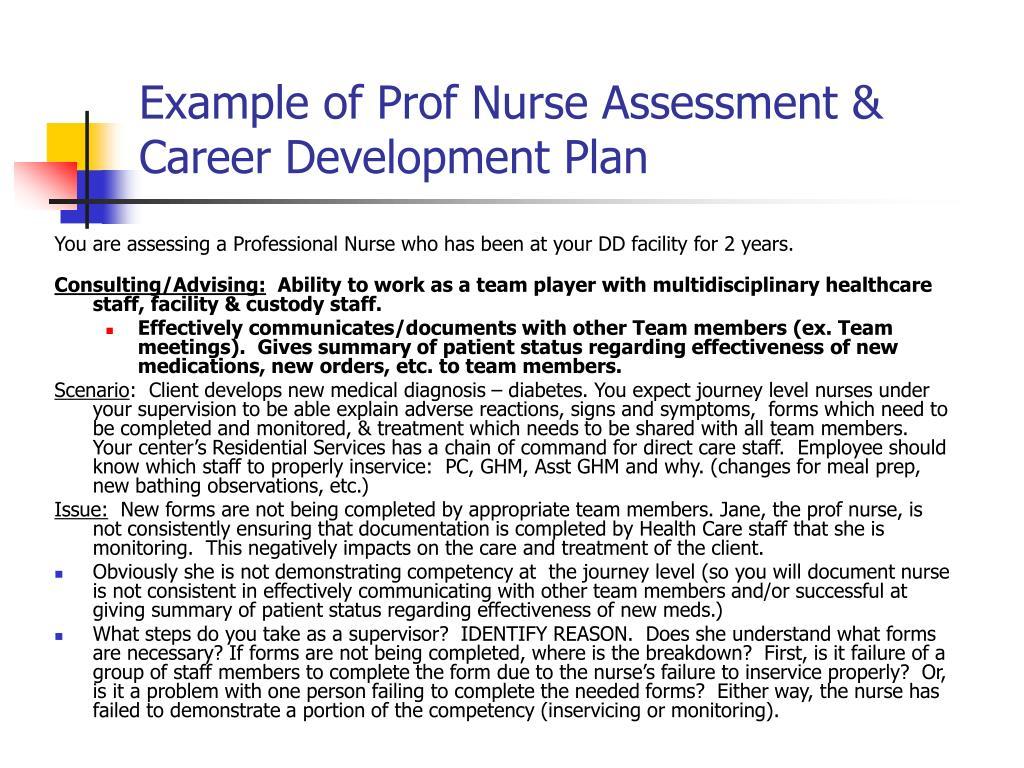 Example of Prof Nurse Assessment & Career Development Plan