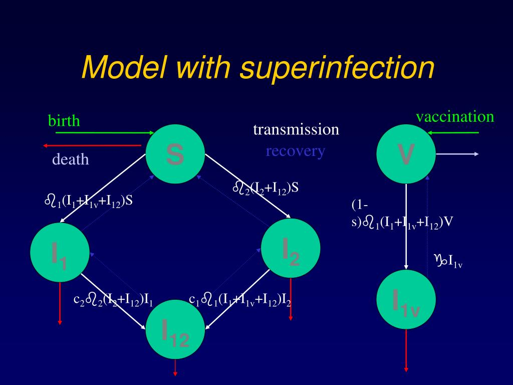 Model with superinfection