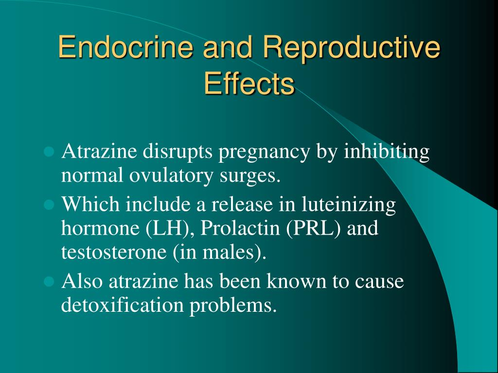 Endocrine and Reproductive Effects