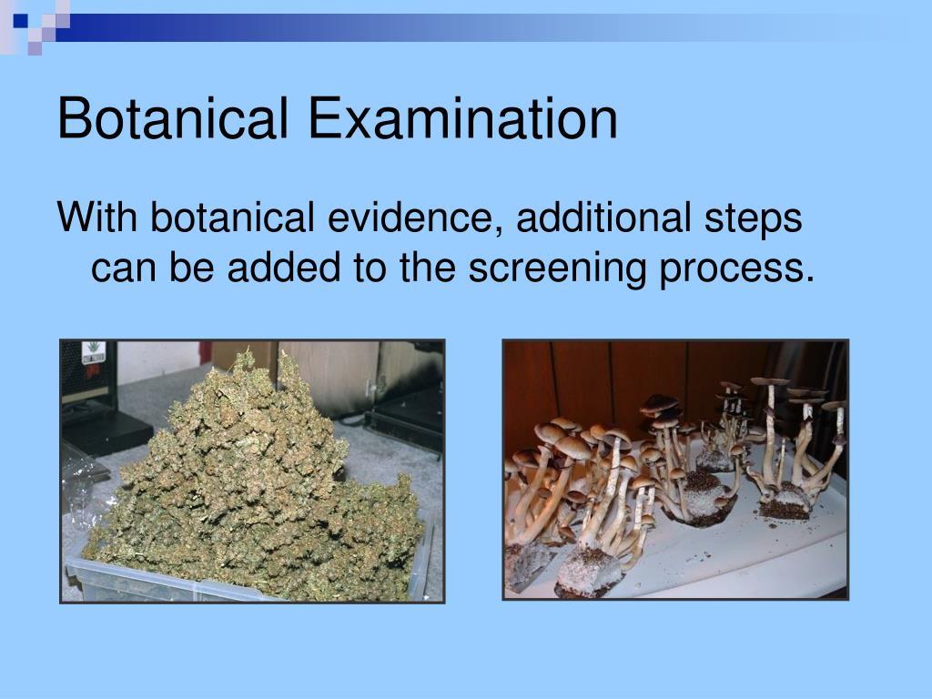 Botanical Examination