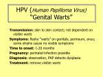 hpv human papilloma virus genital warts