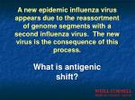 what is antigenic shift