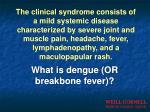 what is dengue or breakbone fever