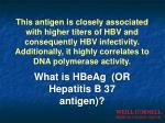 what is hbeag or hepatitis b 37 antigen