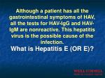 what is hepatitis e or e
