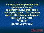 what is paramyxovirus