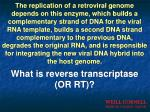 what is reverse transcriptase or rt