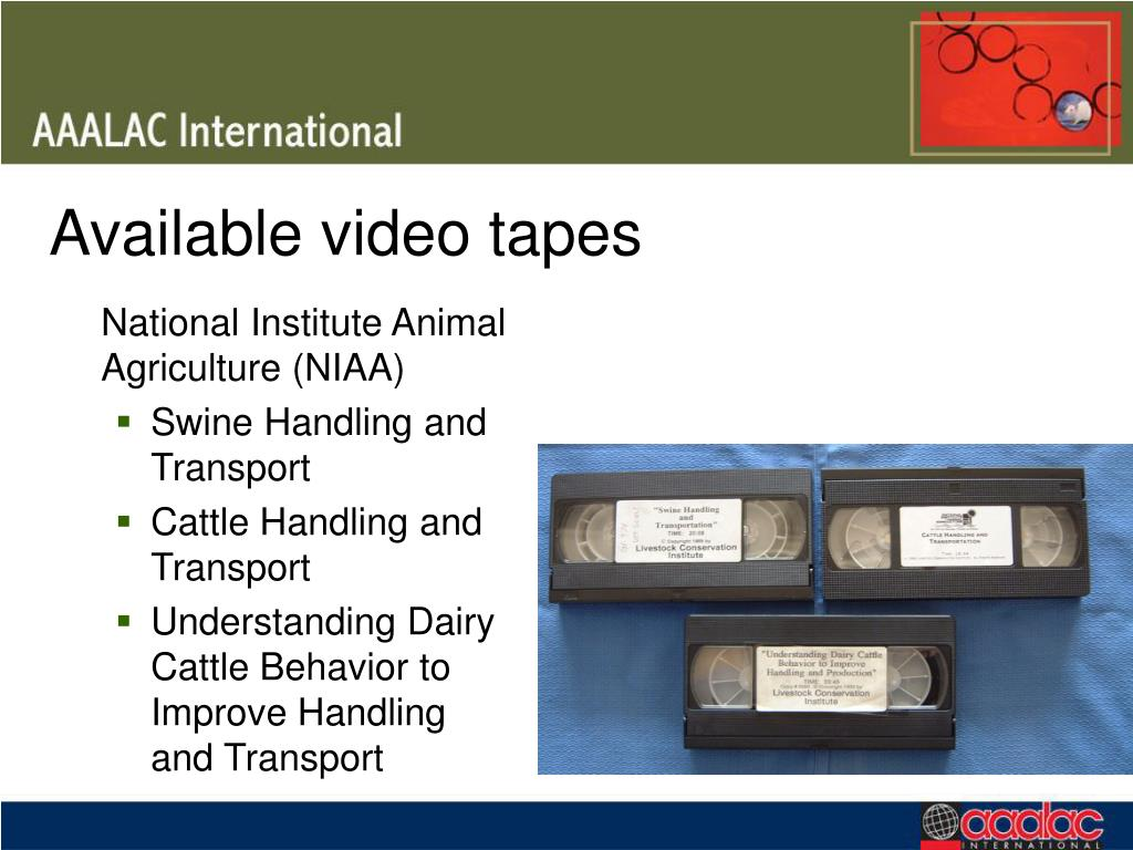 Available video tapes