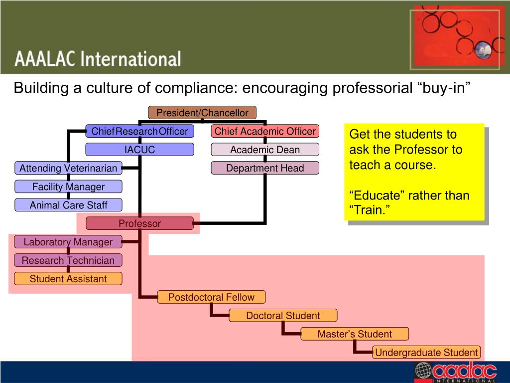 """Building a culture of compliance: encouraging professorial """"buy-in"""""""