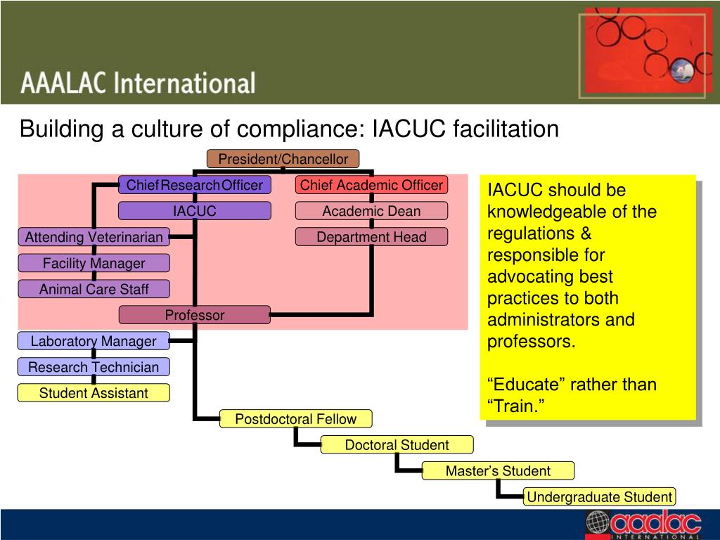 Building a culture of compliance: IACUC facilitation