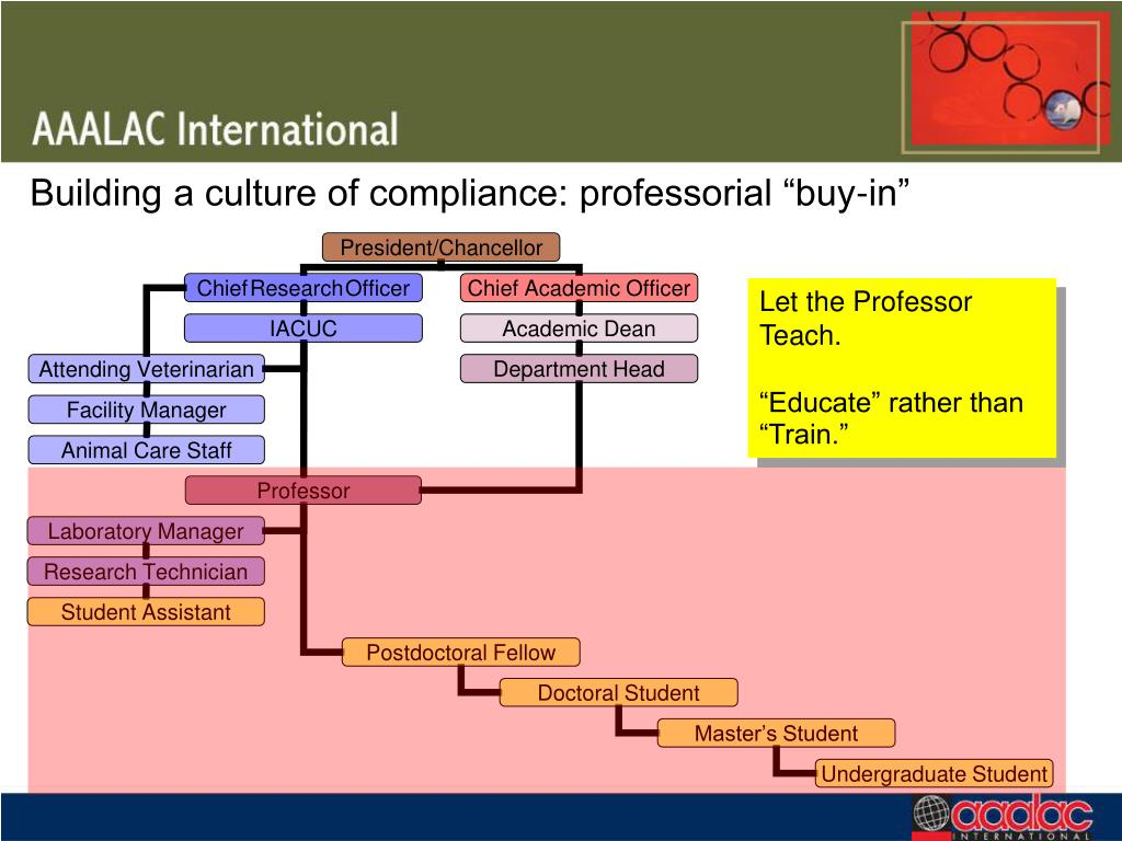 """Building a culture of compliance: professorial """"buy-in"""""""