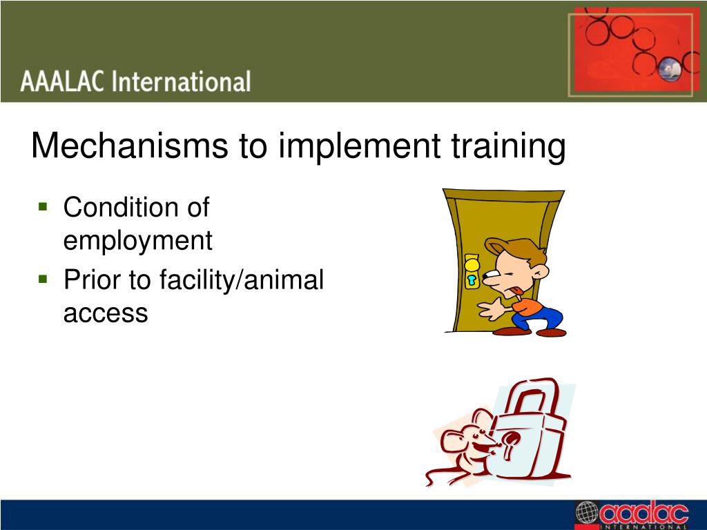 Mechanisms to implement training