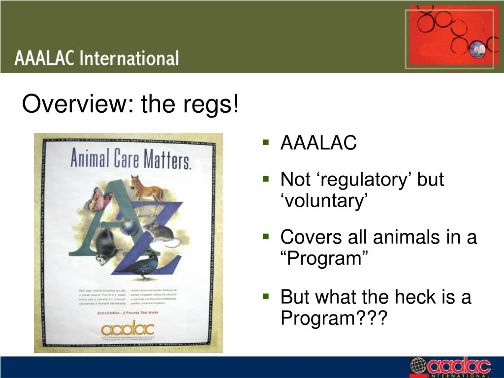 Overview: the regs!