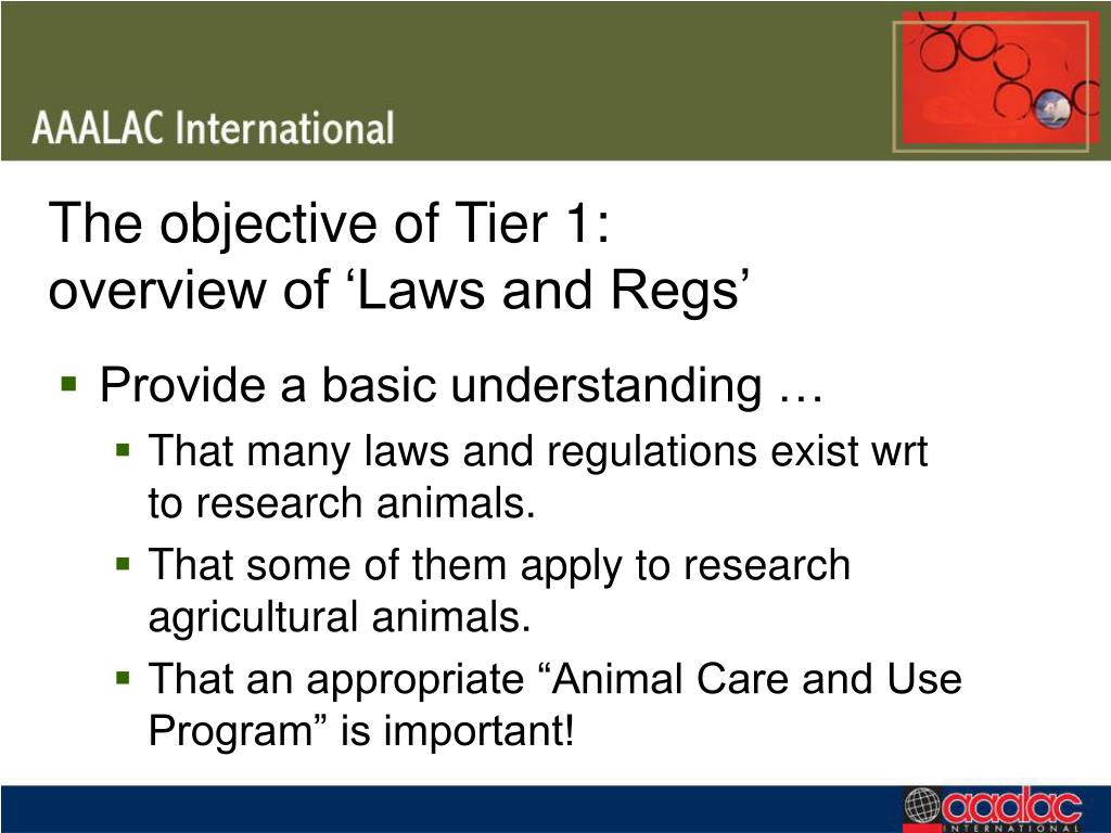 The objective of Tier 1: