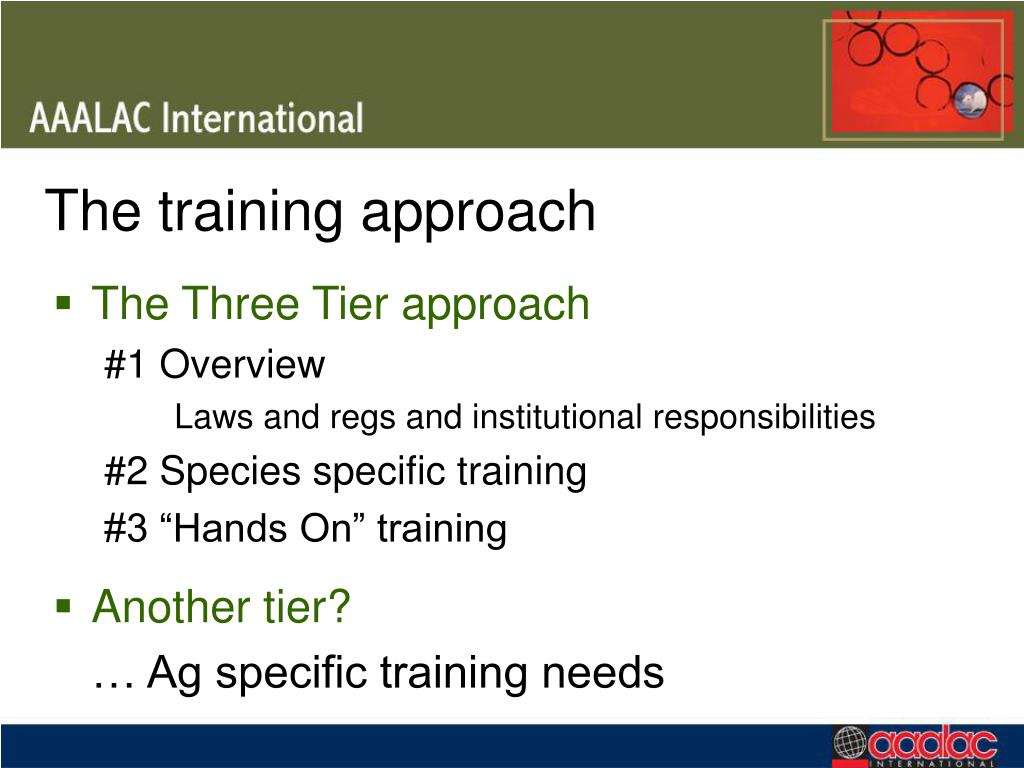 The training approach