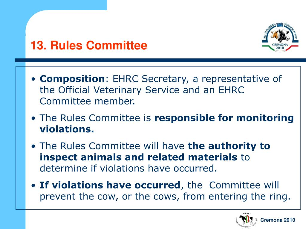 13. Rules Committee