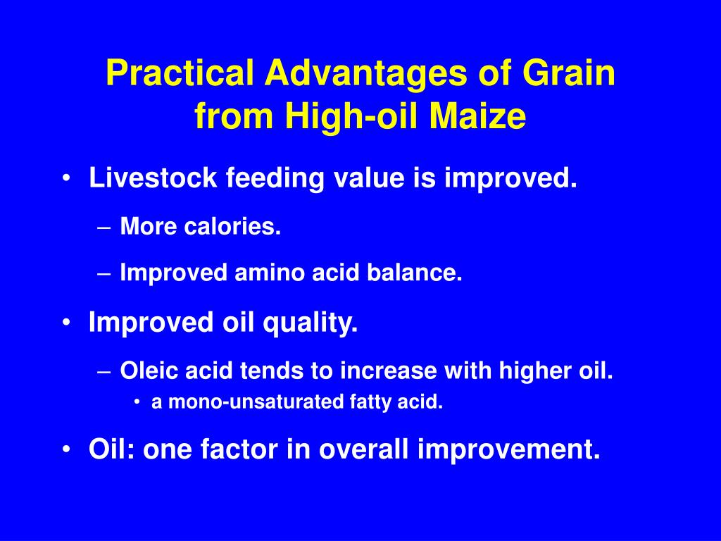 Practical Advantages of Grain from High-oil Maize