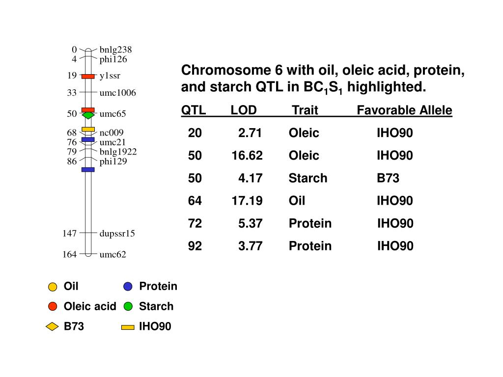 Chromosome 6 with oil, oleic acid, protein, and starch QTL in BC