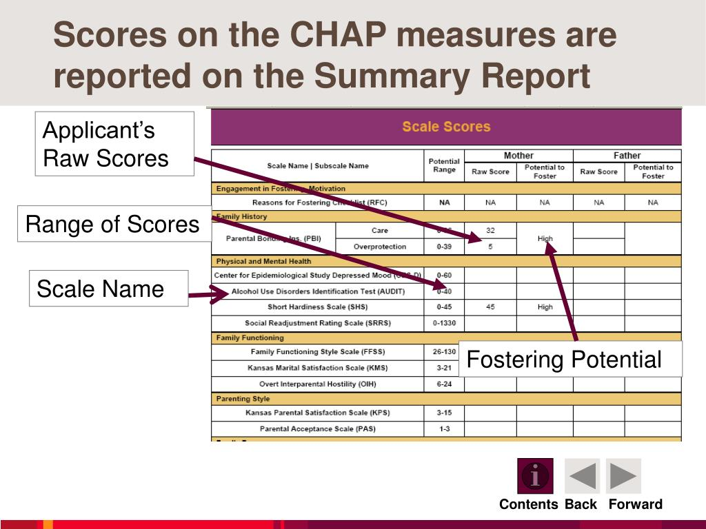 Scores on the CHAP measures are reported on the Summary Report