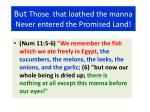 but those that loathed the manna never entered the promised land