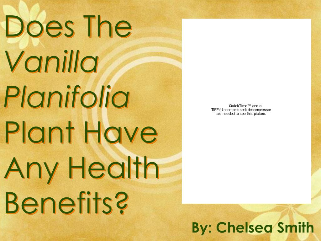 does the vanilla planifolia plant have any health benefits l.