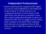 independent professionals