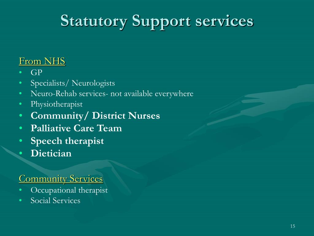 Statutory Support services