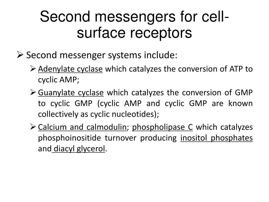 Second messengers for cell-surface receptors