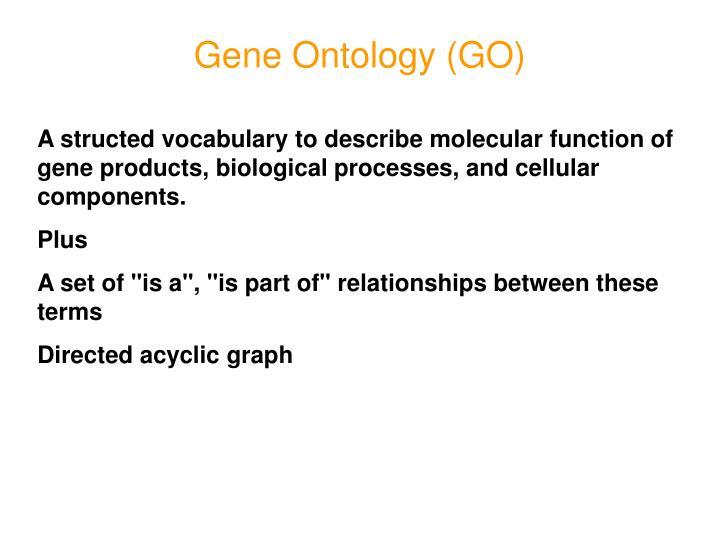 Gene Ontology (GO)