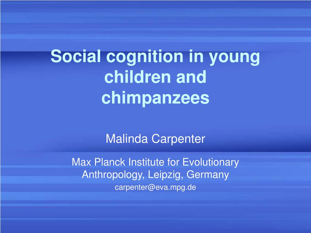 social cognition in young children and chimpanzees l.