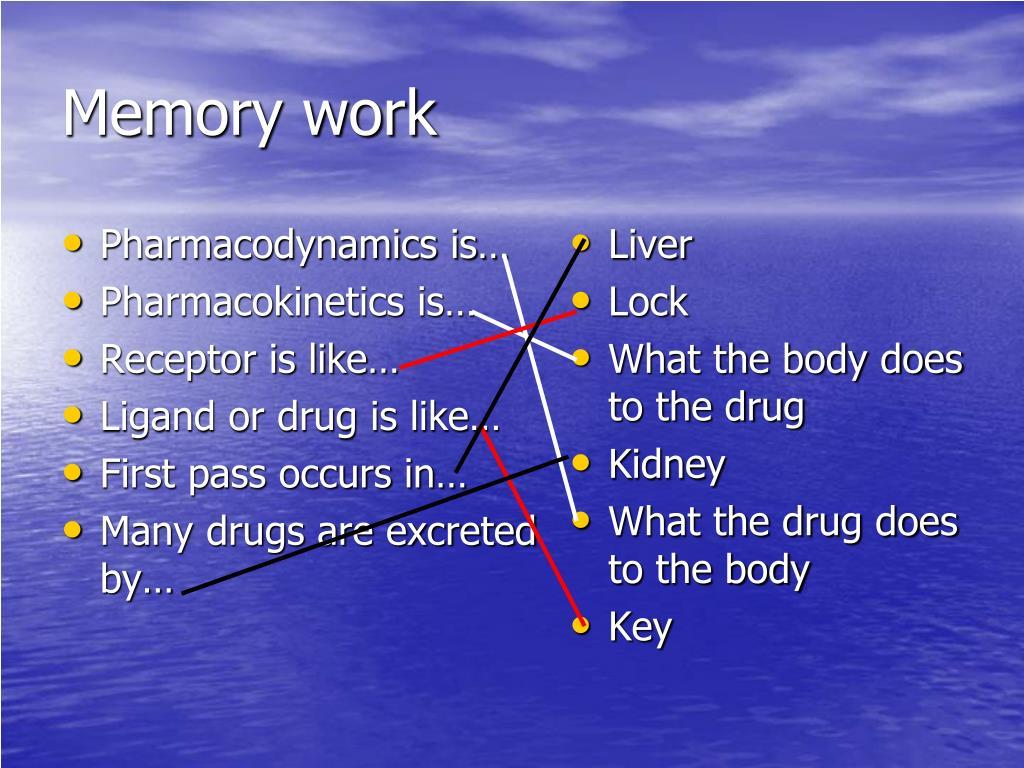 Pharmacodynamics is…