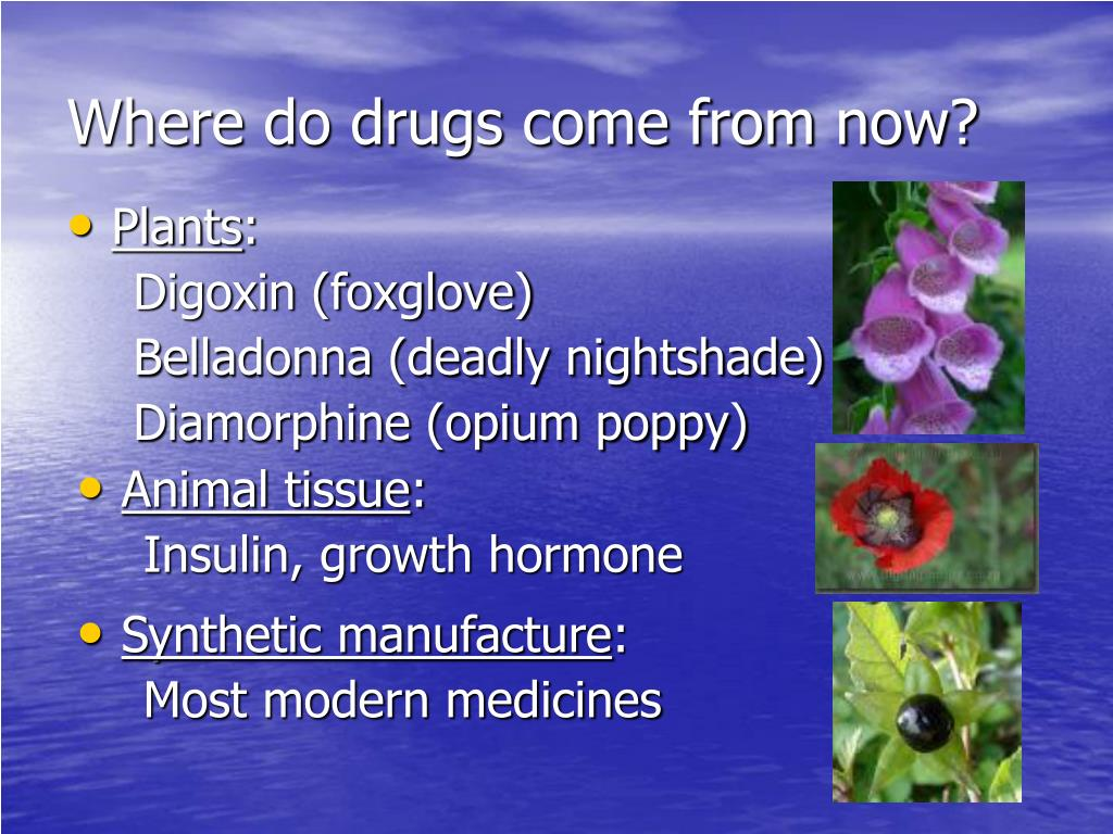 Where do drugs come from now?
