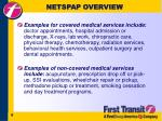 netspap overview6