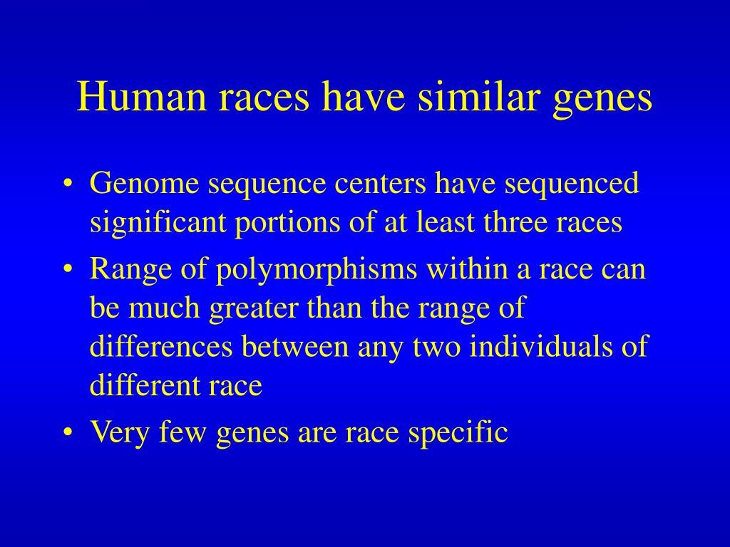 Human races have similar genes