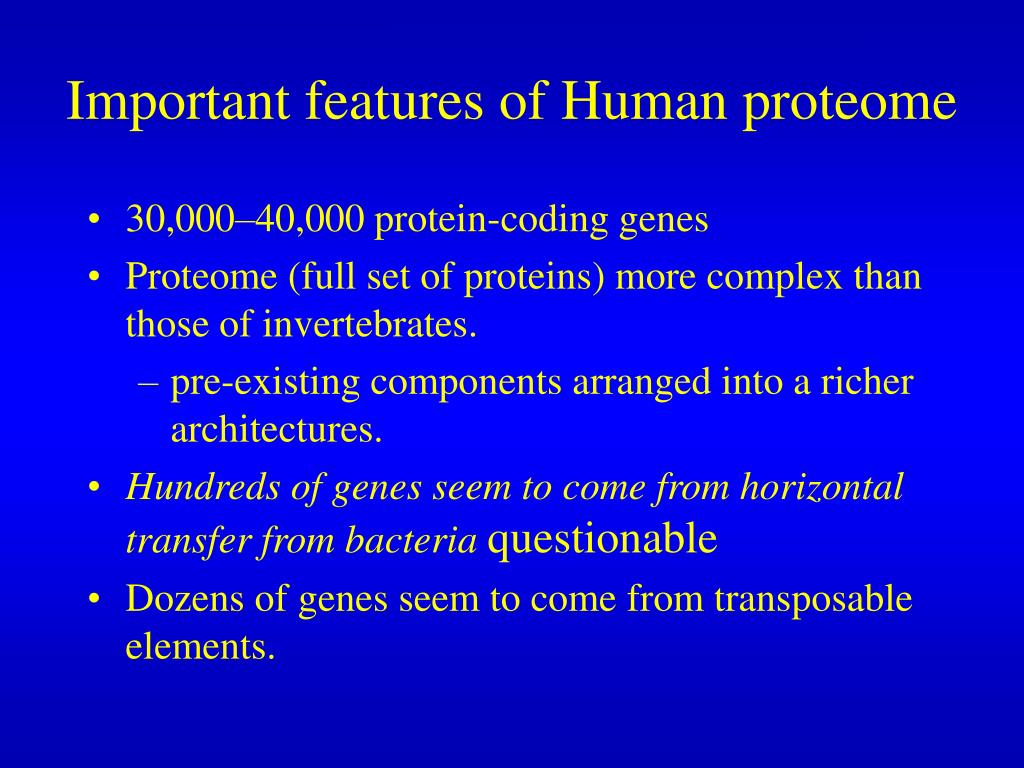 Important features of Human proteome