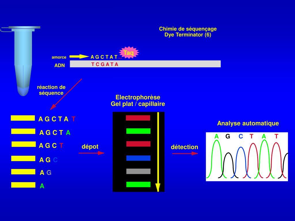 Chimie de séquençage