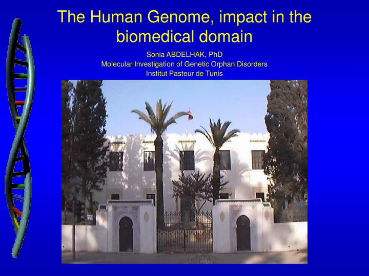 The h uman g enome impact in the biomedical domain