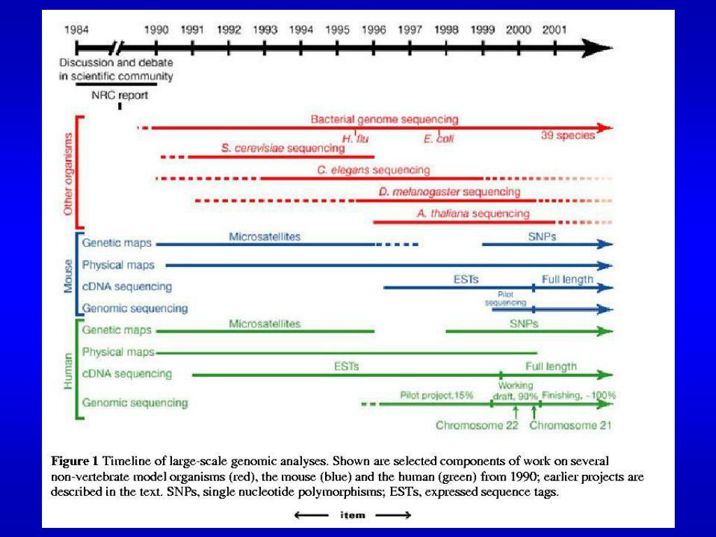 Time-line large scale genomic analysis