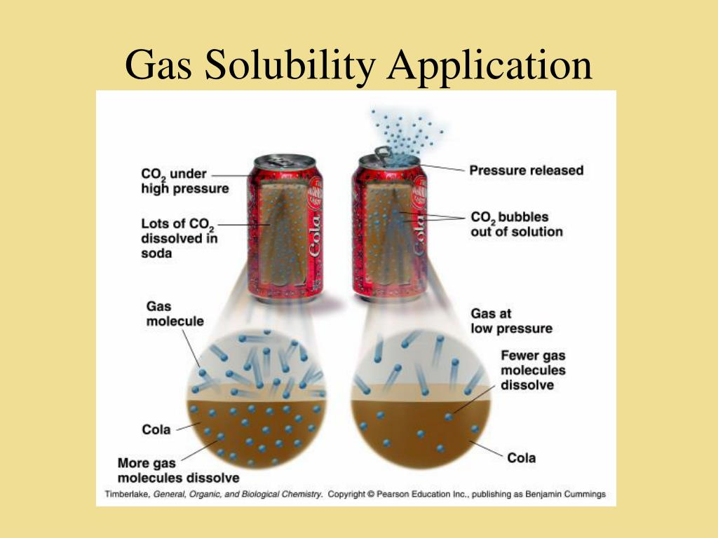 Gas Solubility Application